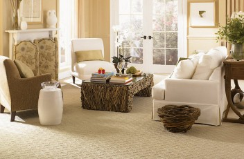 carpet-flooring-living-room